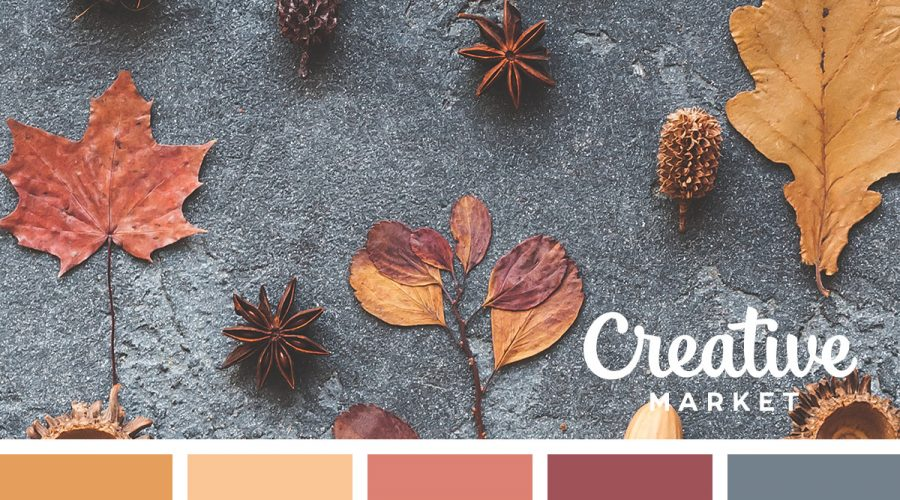 Fall Color Ideas
